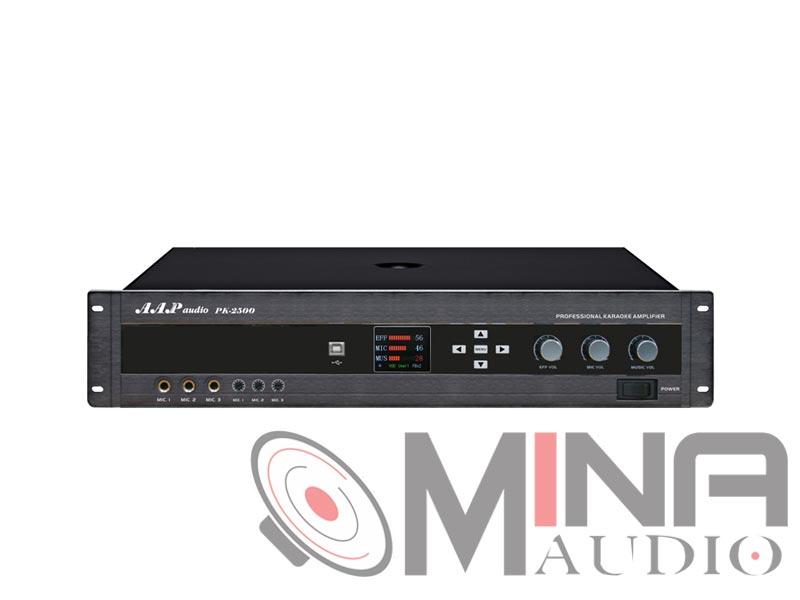 Amply karaoke AAP PK-2500